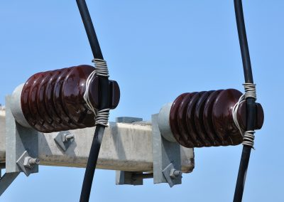 Power lines and insulators